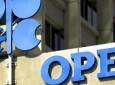 Saudis Study Potential OPEC Collapse
