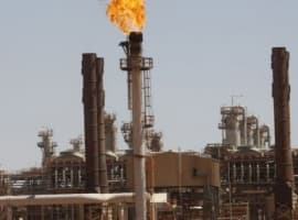 OPEC Production Steady In January As Venezuela Output Plunges