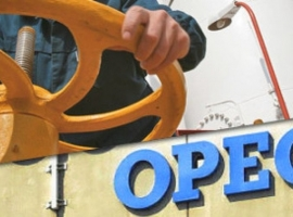 Why OPEC Wants Higher Oil Prices