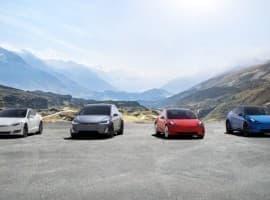 Tesla Fleet
