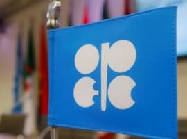 OPEC Agrees To Schedule Meeting On July 1-2