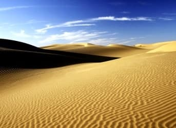 Sahara Forest Project to Revegetate Parts of the World's Largest Desert