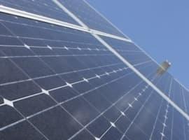 Trump's Solar Tariffs Won't Kill the Industry