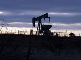 Oil Bulls Undaunted By OPEC Fears