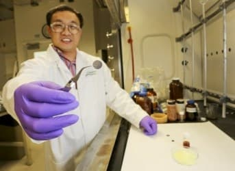 How Food Can Build Better Lithium Batteries