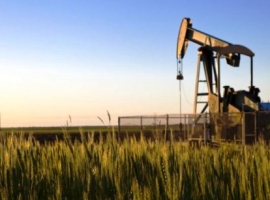 Is The Shale Slowdown Overblown?