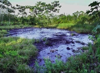 Ecuador vs Chevron Case Gets Down and Dirty