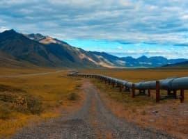 The Keystone Oil Spill Effect