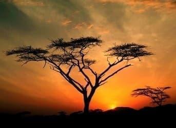 The Huge Risk-Reward Scenario In East Africa