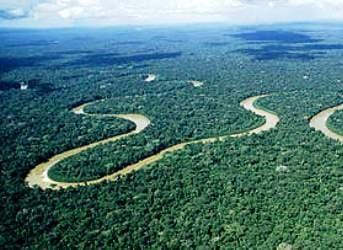 Ecuador Opens Oil Blocks in Amazon Rainforest