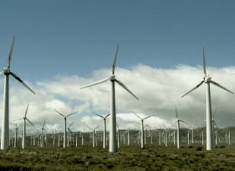 Texan Wind Is Blowing Away The Competition