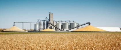 Corn Industry Battered By Shocking Ethanol Decision