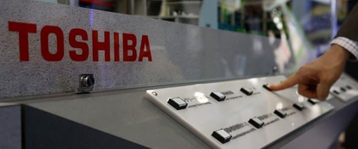 Toshiba nuclear plant