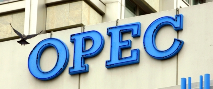 OPEC Cuts Another 200,000 Bpd In March | OilPrice.com