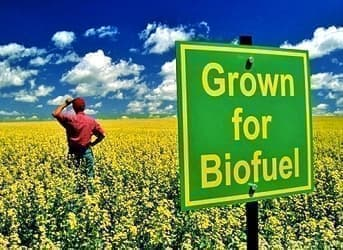 The Top 4 Advanced Biofuels: Keeping Food on the Table