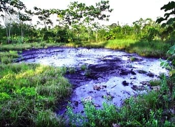 Shareholders Urge Chevron to Accept $18 Billion Ecuadorian Court Judgement