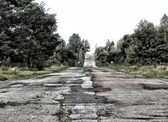 Chernobyl's Trees Pose a Huge Environmental Threat