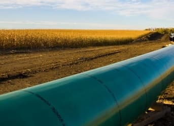 Is Keystone Still Viable Amid Low Oil Prices?