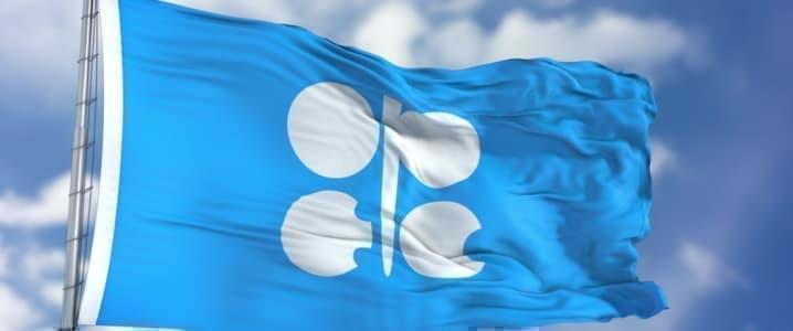 OPEC Losing
