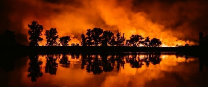 Investors Burned By Wildfires