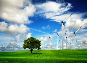 Denmark to Lead EU in Going Green