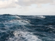 Scientists Develop Wave Energy Device That Generates Low-Cost Electricity