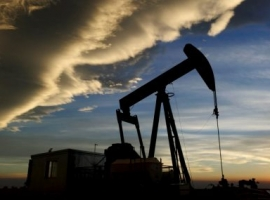Western Canada Sheds 17.5% Of Oil, Gas Producers Since 2014