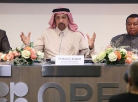 OPEC Seeks More Formal Marriage With Russia