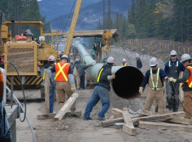 B.C. Businesses, First Nations Side With Alberta On Trans Mountain