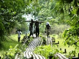 Niger Delta State Looks To Break Free From Oil