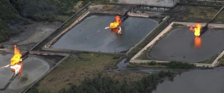 Shell Niger Delta