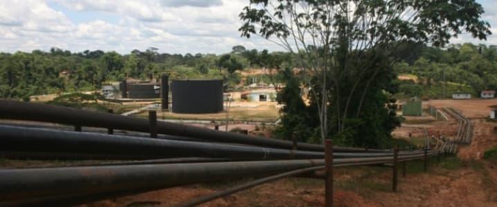 Amazon oil