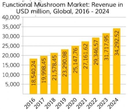 Mushroom Market